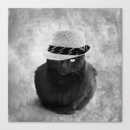 Cat with hat Canvas Print