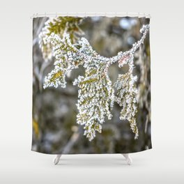 Frost covered tree leaves Shower Curtain