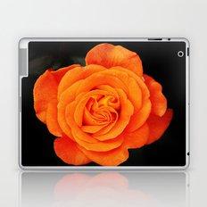 Romantic Rose Orange Laptop & iPad Skin