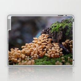 Mushroom Forest Laptop & iPad Skin
