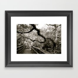 Bridge to ______ Framed Art Print