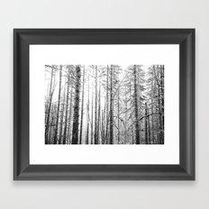 Forest Trees - Winter Wood Framed Art Print