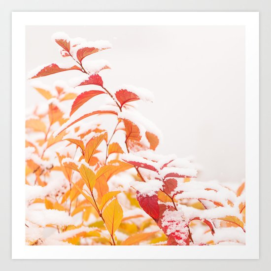 Snow covered red leaves Art Print