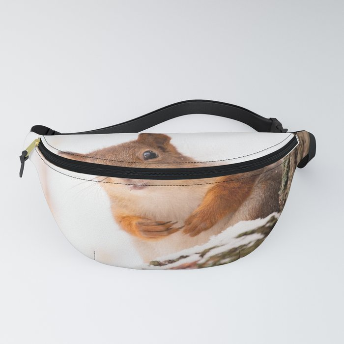 Squirrel in first snow #decor #buyart #society6 Fanny Pack