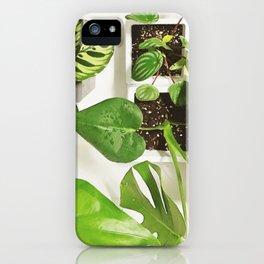 Urban jungle iPhone Case
