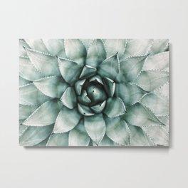 Succulent Plant, Desert Wall Art, Boho Decor, Cactus Print Metal Print