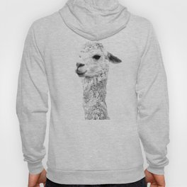 Black and white llama animal portrait Hoody