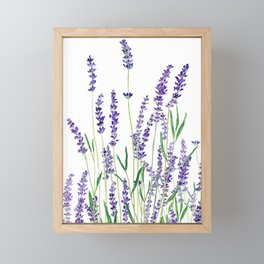lavender watercolor horizontal Framed Mini Art Print