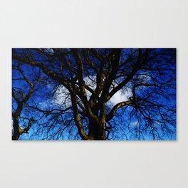 Mr Blue Sky. Canvas Print