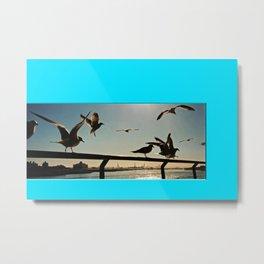 Americana - Pier 17 - Seagulls - Manhatten - NYC Metal Print