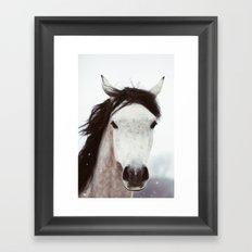 Winter Horse Framed Art Print