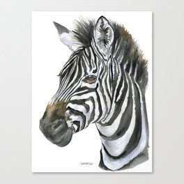 Zebra Watercolor Painting - African Animal Painting Wildlife Head Bust Canvas Print