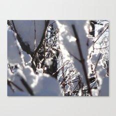 Glitter Reeds Canvas Print