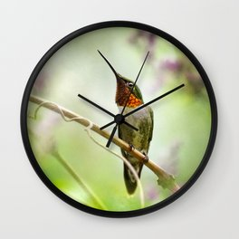 Hummingbird Passion Wall Clock
