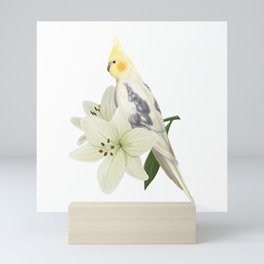 Pied Cockatiel Mini Art Print
