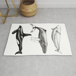 Beluga, humpback whale and orca killer whale Rug