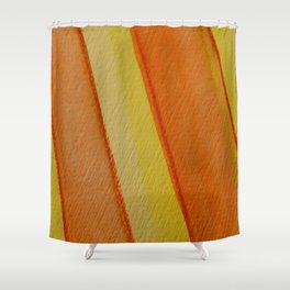 Happy Colors Strips Shower Curtain