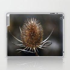 Teazle Laptop & iPad Skin