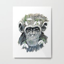 chimpanzee with snowdrop Metal Print