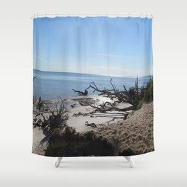 The Boney Trees on the Beach Shower Curtain