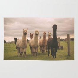 Alpacas at Tio Farm Rug