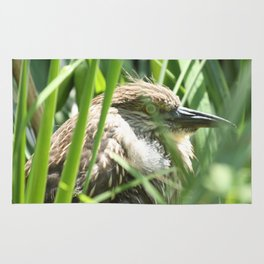 Hiding Bird Photography Print Rug