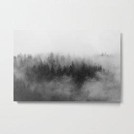 Trees in Fog 2, Juneau Alaska Metal Print