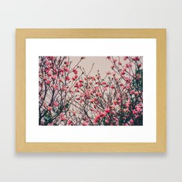 Retro Magnolia Framed Art Print