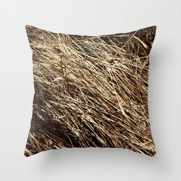 Dry grass rhythms Throw Pillow