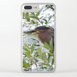 Green Heron at Lakeside Clear iPhone Case