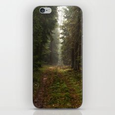 Lost in the forest iPhone & iPod Skin