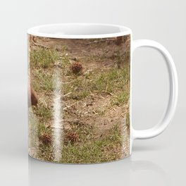 Pigeon (Falls the Shadow, 1) Coffee Mug