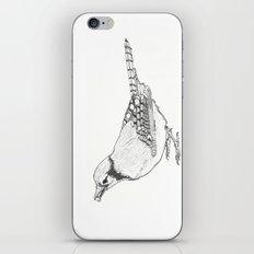 Black and White Blue Jay (02) iPhone & iPod Skin