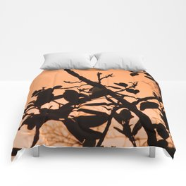 Positive Comforters