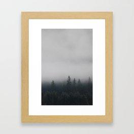 Northwestern misty forest Framed Art Print