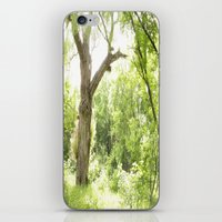 narnia iPhone & iPod Skins featuring NARNIA - The Forest  by Lord Elion