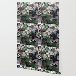 Sea Glass Assortment 3 Wallpaper