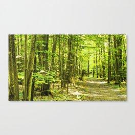 Pick a tree, any tree Canvas Print