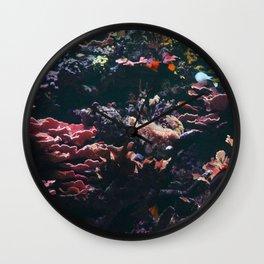 Aqua Fresh Wall Clock