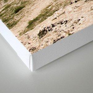 Platja des Trocadors, Formentera Canvas Print