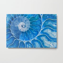 Blue colored Ammonite fossil Metal Print