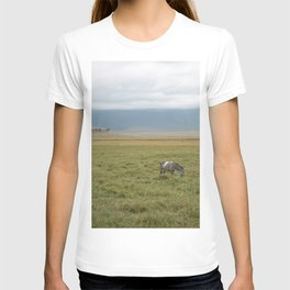Stripeless Zebra T-shirt