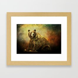 Grizzly Bear in Morning Sun Framed Art Print