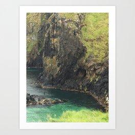 View From Carrick Rope Bridge Art Print