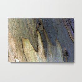 Eucalyptus Tree Bark 7 Metal Print