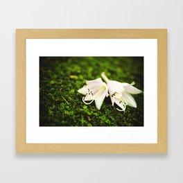 Plantain Lilies Framed Art Print