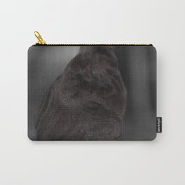 Will it Stare? Carry-All Pouch