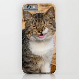 Funny cat iPhone Case