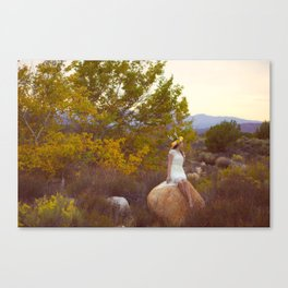 Life in the Desert Canvas Print