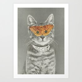 The cat's eyes have it Art Print